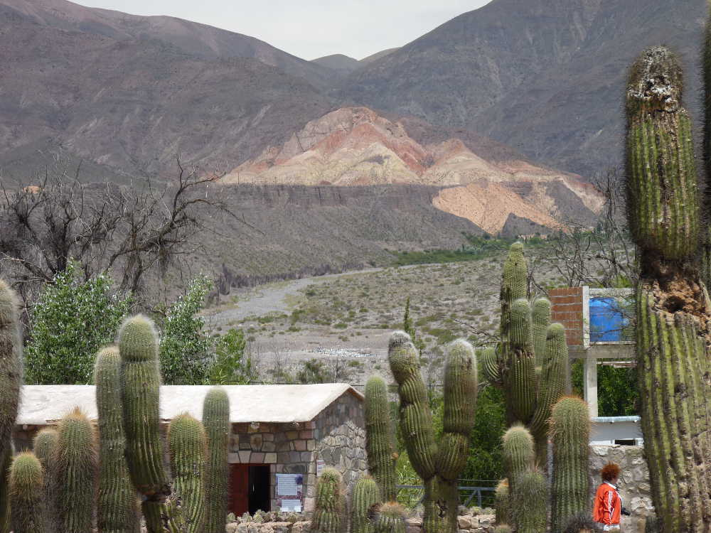 The view of the Quebrada from the cactus garden