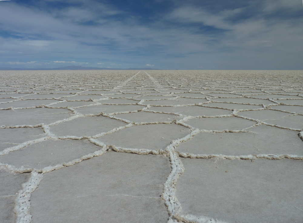 The surface of the Salar